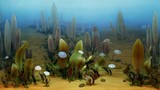 Ediacaran life before the Cambrian Explosion
