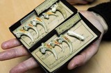 sea-eagle talons used by Neanderthals for jewelry 130,000 y ago.